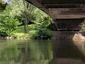 Sous les ponts - 1